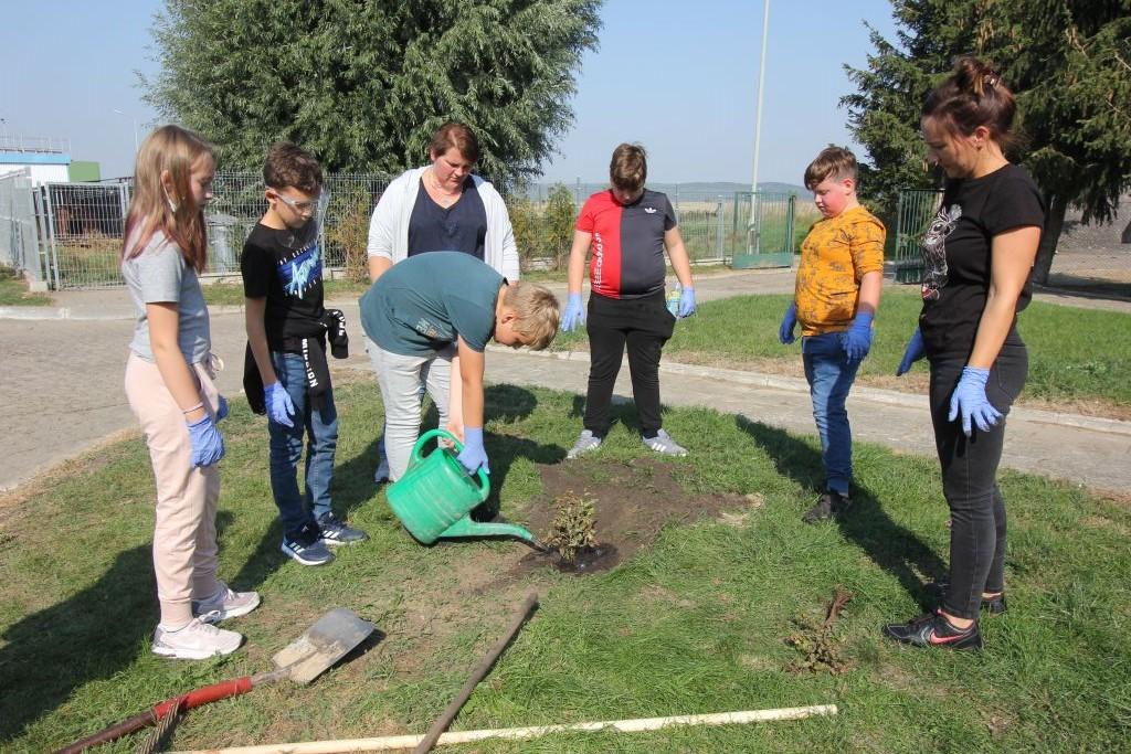 Dzieci ze Szkoły Podstawowej w Cedyni wraz z wychowawczyniami sadzą drzewka na terenie oczyszczalni w Cedyni.