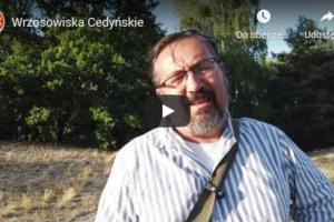 wrzosowiska_cedynskie